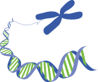 whole-exome-sequencing-icon