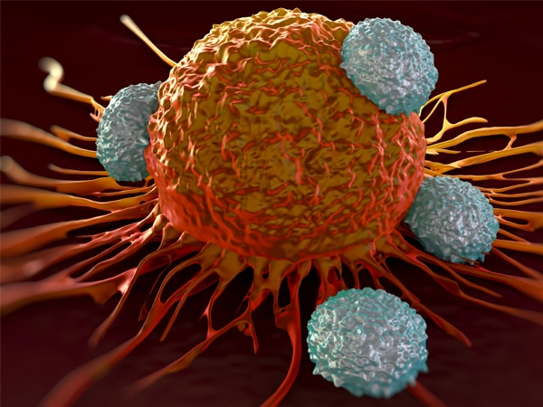 Profiling cancer to predict response to immunotherapy