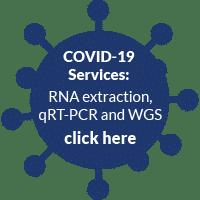 covid-19-services-icon-dark-blue