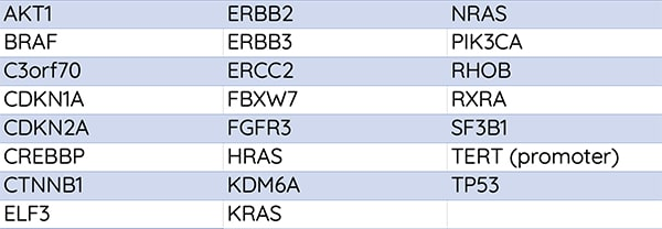 bladder-cancer-gene-list