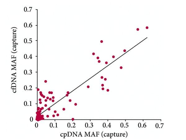 cpDNA-MAF-graph