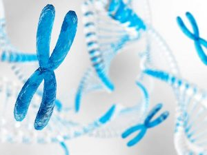 Exome sequencing for cytogeneticists